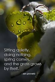 sitting quietly grass grows
